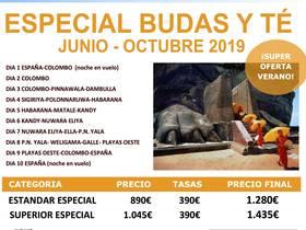 ESPECIAL BUDAS Y TE